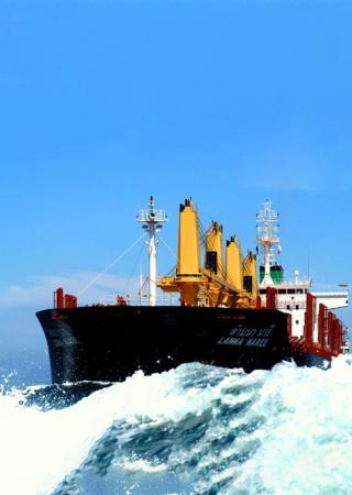 ECO BULKERS
